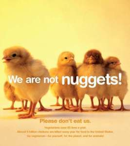 Animals-are-not-ours-to-eat-peta-7363357-472-530